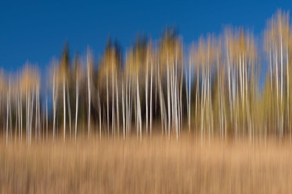 Kamloops Abstract Photography - 1