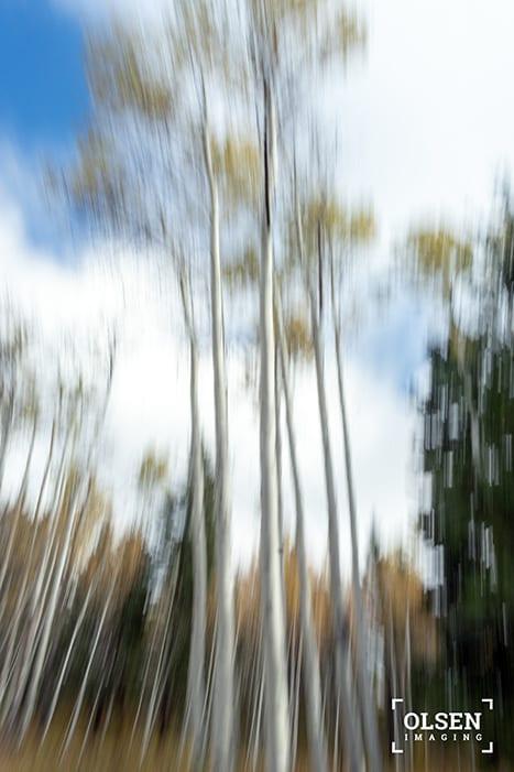 Kamloops Abstract Photography - 2