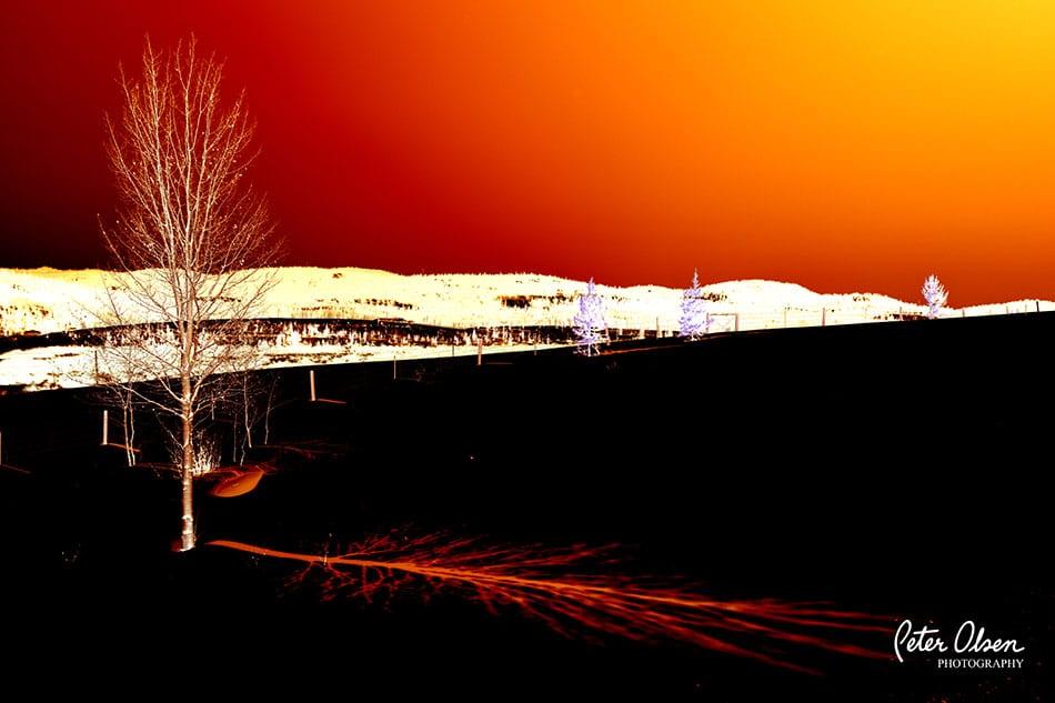 Kamloops Abstract Photography - 6